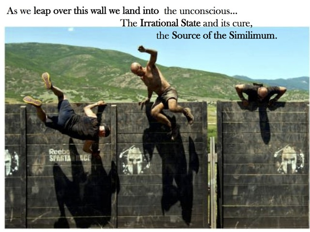 Leap to the similimum7